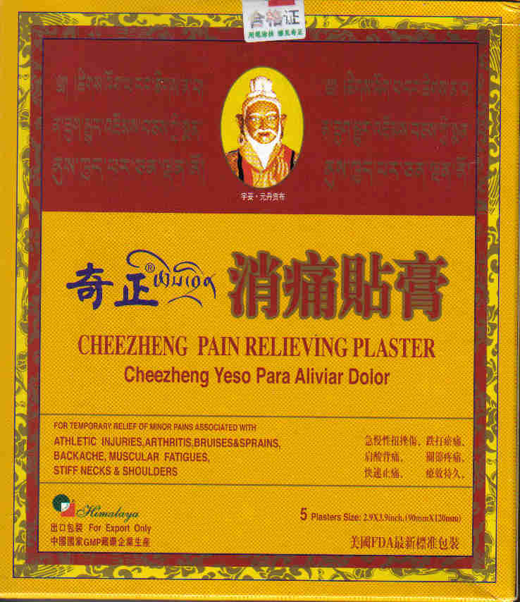 Cheezheng Pain Relieving Plaster (5 Plasters-90 mm x 120 mm Each)